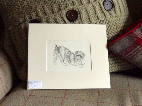 Terrier with ball, 1940's print by K F Barker - Ter B17